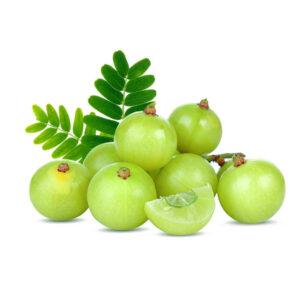 Amla Fruchte Aus Indien